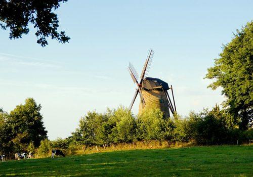 Windmühle Uelsen_1080_ok